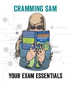 Cramming Sam
