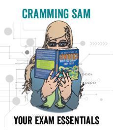 Cramming Sam